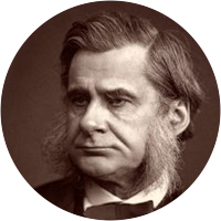 Picture of Thomas Huxley